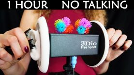 ASMR No Talking Ear Brushing & Ear Cleaning Sounds – Custom Binaural Microphone