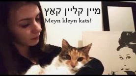 ASMR Yiddish Storytime + Hand Movements – phrases, alphabet